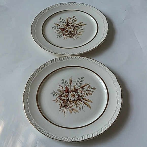 Limoges Other - LIMOGES SUNDALE FLORAL 22K GOLD PLATES SET OF 2